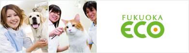 福岡ECO動物海洋專門學校